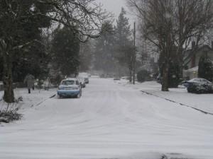 Our neighborhood under snow.
